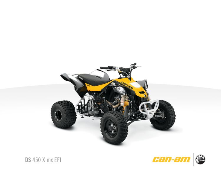 Can-Am DS450x EFI MX